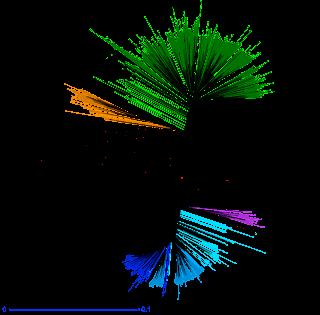 3k tree