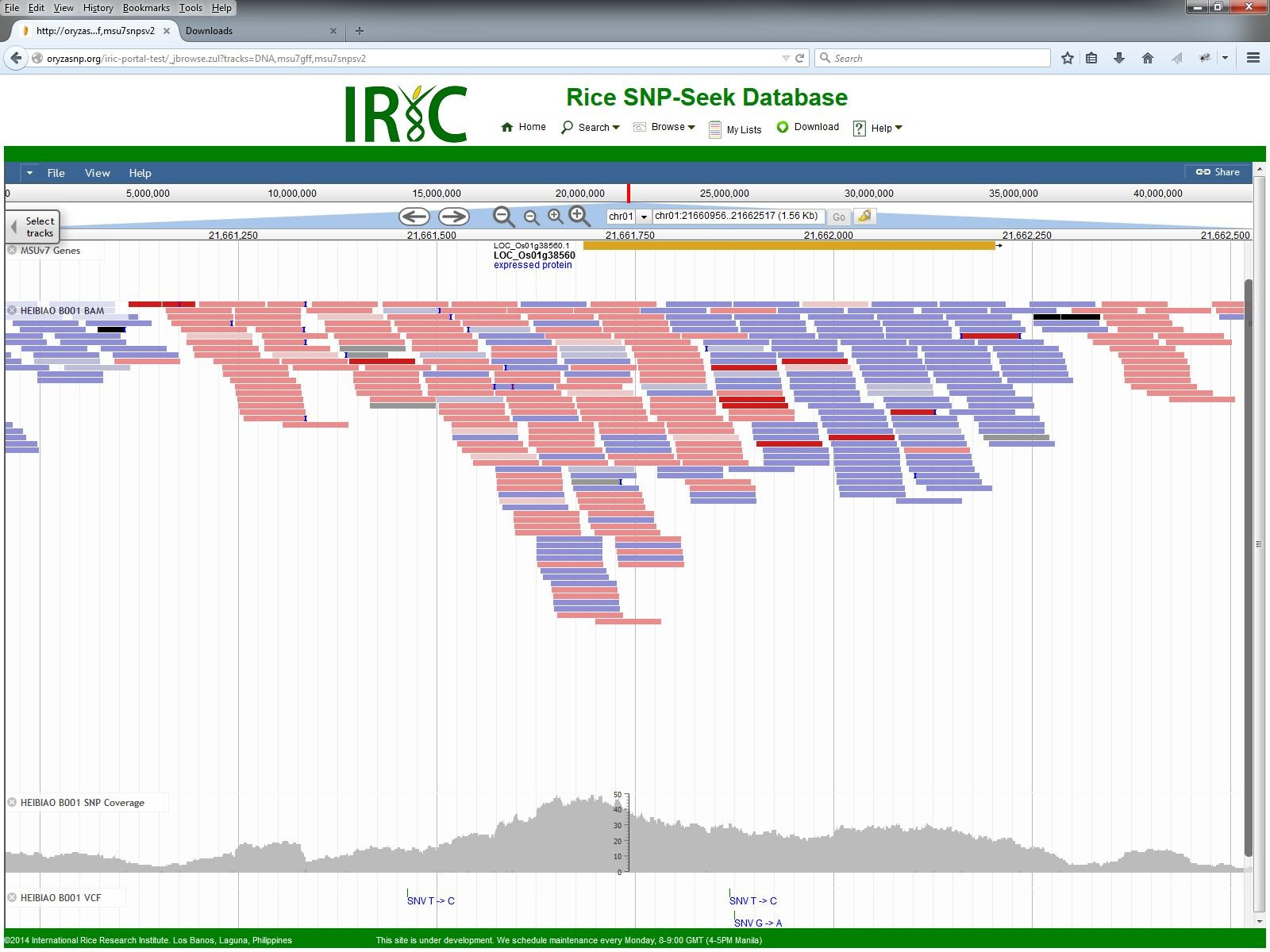 IRIC Portal JBrowse